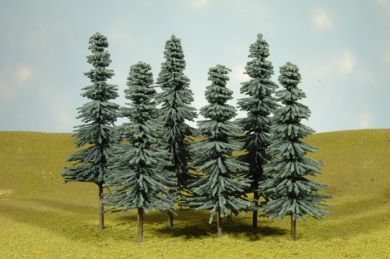 "5"" - 6"" Blue Spruce Trees"