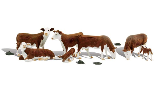 No.2767 Hereford Cows O